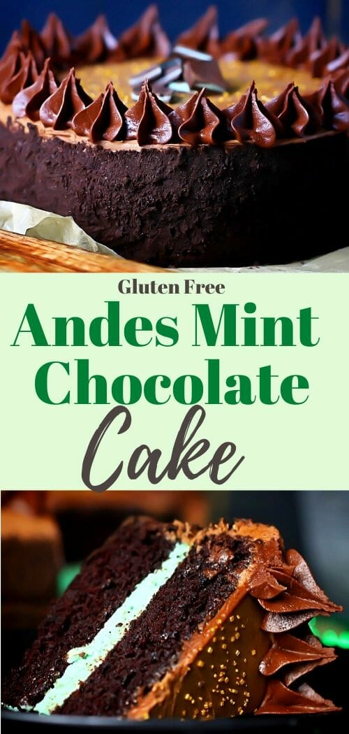 Chocolate layered mint cake with sprinkles and andes candies